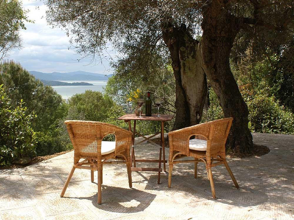 Olivenbaumterrasse (Wohnung Vera)